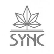 SYNC CBD