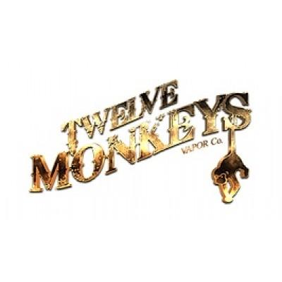 Twelve Monkeys Vapor